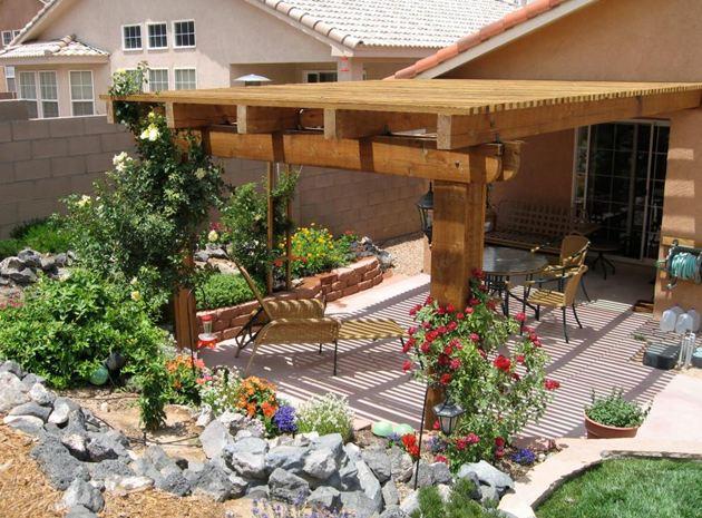 backyard to life